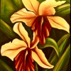 Carol's Flowers, oil on canvas